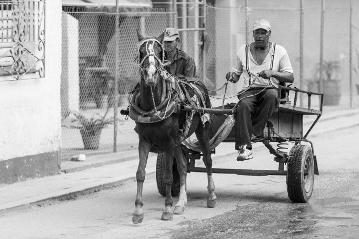 Pferdefuhrwerk - Vorankommen auf der Fototour nach Kuba